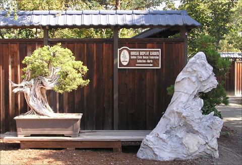 January 2009 Newsletter Conejo Valley Bonsai Society